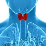 Two Easy Ways to Treat And Cure Hypothyroidism (Success Story)