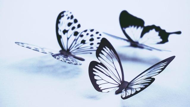 what-is-a-spiritual-awakening-butterfly-transformation