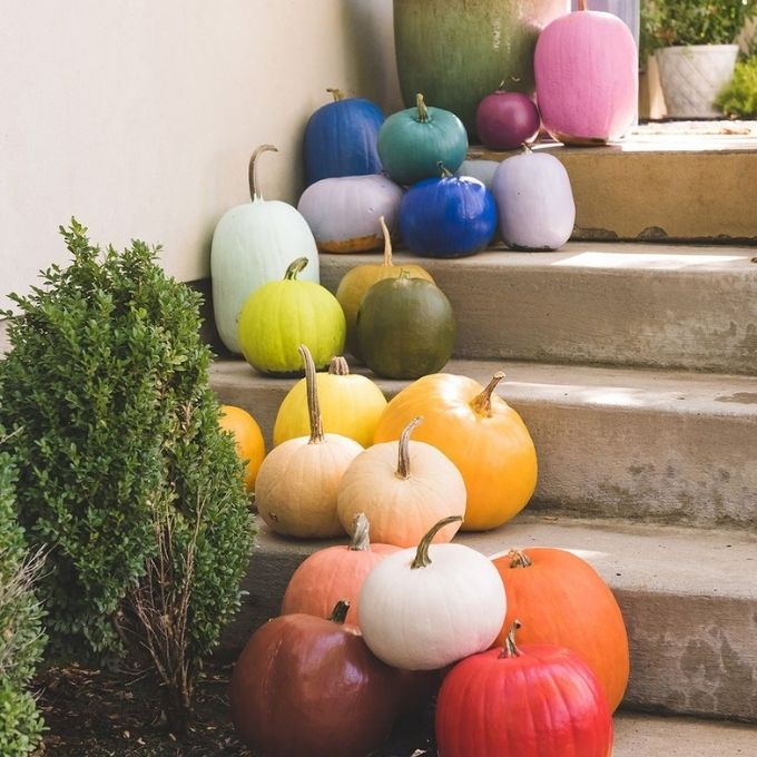 rainbow multi colored painted pumpkin ideas