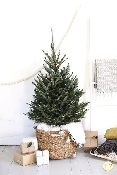 minimalist Christmas tree with no ornaments in wicker basket