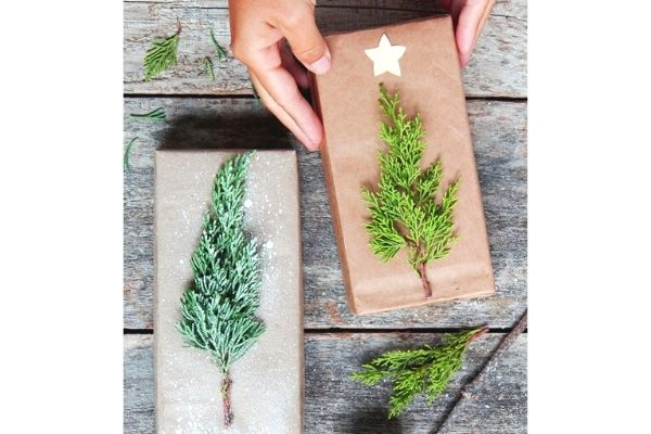 brown kraft paper with evergreen twig and flick of white paint zero waste gift wrap