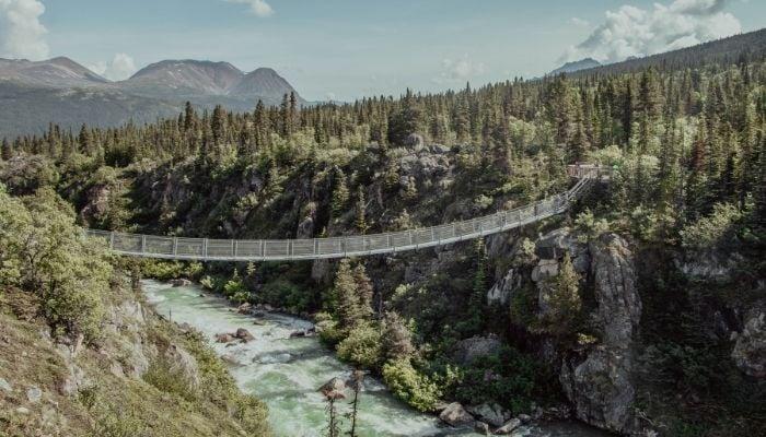 a suspension bridge across a clear lake
