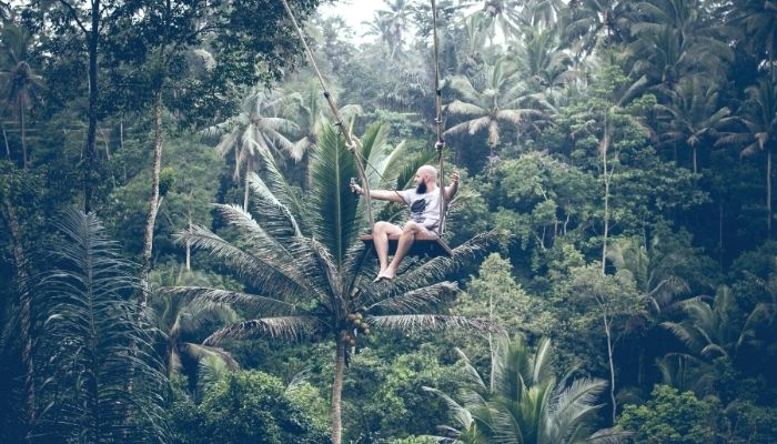 a man on an open swing in the jungle